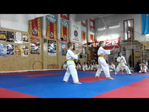Аттестационный экзамен по каратэ в клубе Тигренок 24.04.2016 г. ч 2