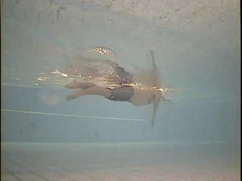 Total Immersion Swimming Freestyle Demo by Shinji Takeuchi, Let's swim like Shinji!! Freestyle Workshop in Hong Kong on Nov. 3-4 http://www.totalimmersion.net/component/eventlist/details/1004-effortless-endurance-free...
