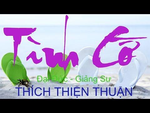 Thích Thiện Thuận 2015 - Tình Cờ (Thuyet Phap Moi)