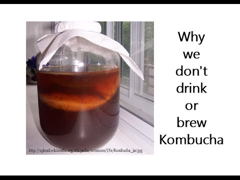 Why we don't drink or brew Kombucha
