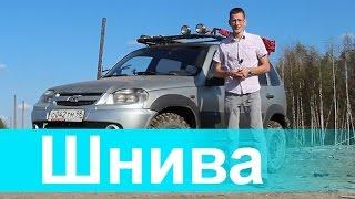 Chevrolet Niva Костя Академег (akademeg) Шевроле Нива
