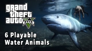 6 Water Animals You Can Play GTA V