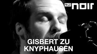 Seltsames Licht - GISBERT ZU KNYPHAUSEN - tvnoir.de
