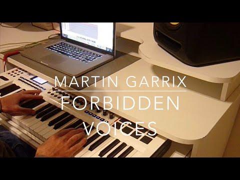 Martin Garrix - Forbidden Voices (Alex Luciano Cover)
