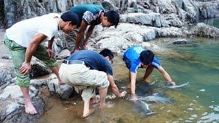 Bắt Cá Anh Vũ - Sông Đà