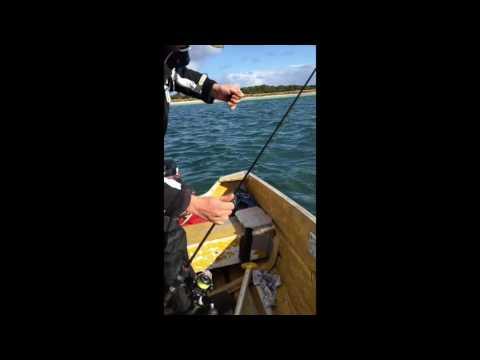 OZ SALMON! Fishing The Most Enjoyable Way to go Broke!