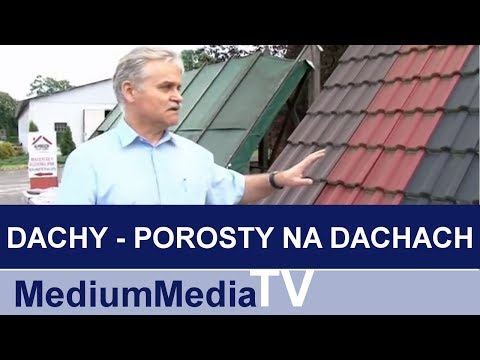 DACHY - Porosty na dachach