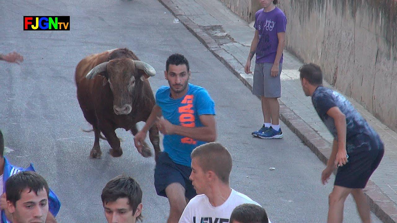 2 Toros Sant Joan 2014 - Nules