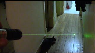 5mW 532nm Green Laser Pointer-Laser Verde-