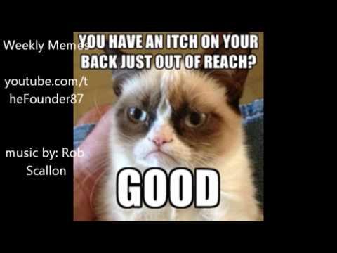 Weekly Memes #26 - Grumpy Cat
