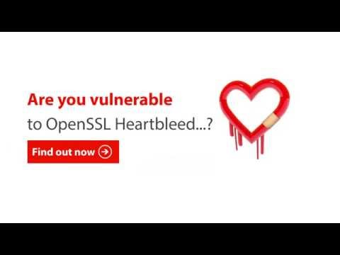Are you vulnerable to OpenSSL Heartbleed? Find out...
