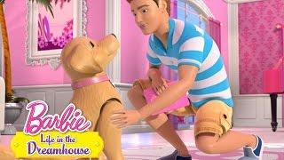 Barbie - Maznáčikovia