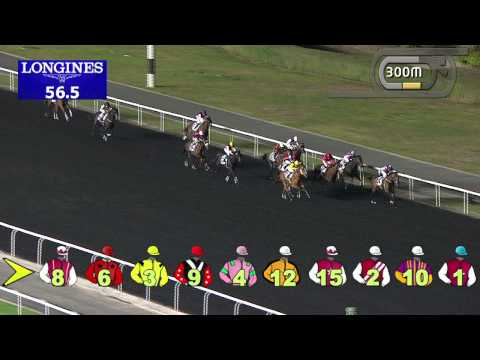 Vidéo de la course PMU THE RANGE ROVER EVOQUE TROPHY