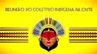 CNTE - Avanços para a educação indígena são discutidos em Coletivo - CNTE