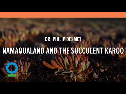 The Nature of Namaqualand and the Incredible Succulent Karoo | Conservation South Africa (CSA)