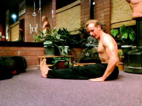 Chinese Qi Gong Posture #2