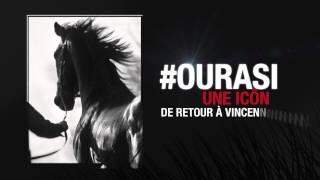 Ourasi, une icône de retour à Vincennes