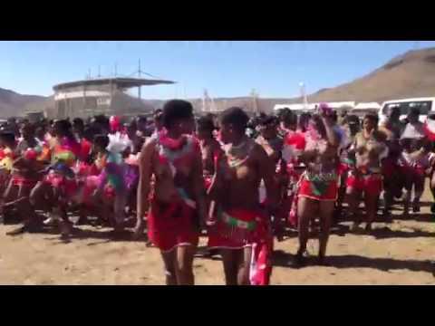 umhlanga reed dance 2013