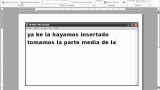 Como Invertir Una Imagen En Word (2003, 2007 O 2010)