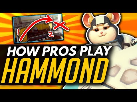 Overwatch | How The Pros Play HAMMOND - Composition, Ability and Playstyle Guide