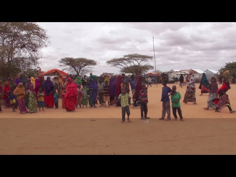 Gripped by food insecurity and conflict, Somalia needs more support