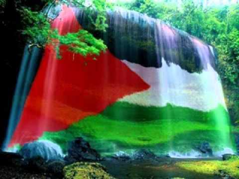حفلات شعبية فلسطينية