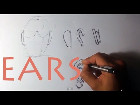 How to Draw the Ear - Easy Things To Draw