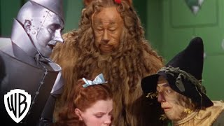 Wizard Says Go Away Wizard Of Oz 75th Anniversary Own