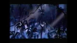 Opening To Tarzan II 2005 VHS