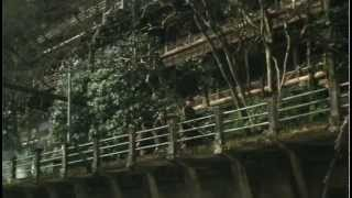Hachiko.Monogatari[1987]