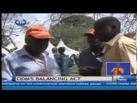 Warning as more leaders pull out of ODM elections