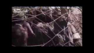 Rare WW2 Pacific War Footage *Graphic*