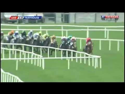 Bitofapuzzle - Irish Stallion Farms E B F  Mares Novice Hurdle Championship Final 2015