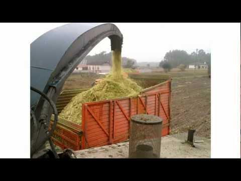 Silagem de Milho 2011/ Corn Silage 2011 Ferreira-a-Nova PORTUGAL