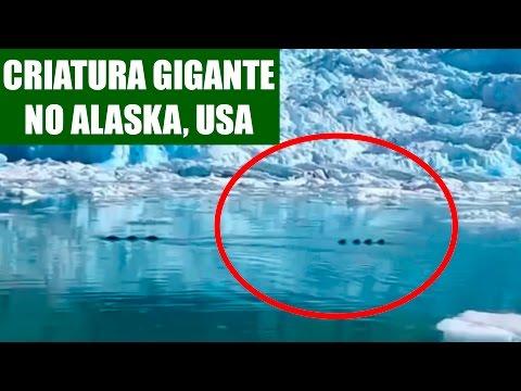 Criatura Gigante filmada no Alaska ?