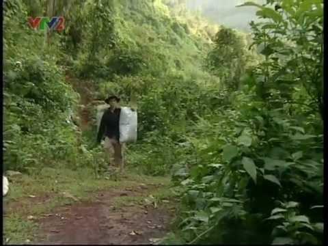 Đồng quản lý rừng đặc dụng tại Việt Nam - Phần I