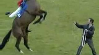 El salto mortal del caballo