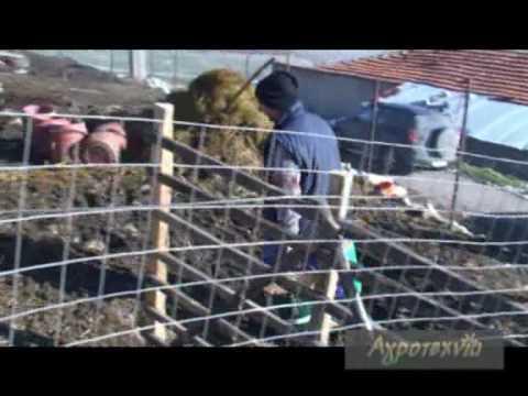 kelly Κέλλη Φλώρινας Αγροτεχνία West Channel.wmv