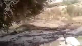 فيضانات اداوتنان