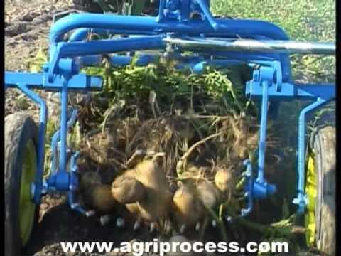 Arracheuse de pomme de terre pour motoculteur occasion