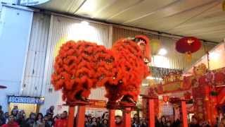 Nouvel an chinois 2013 à Paris