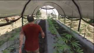 GTA 5 Easter Eggs: Secret Marijuana Farm Easter Egg