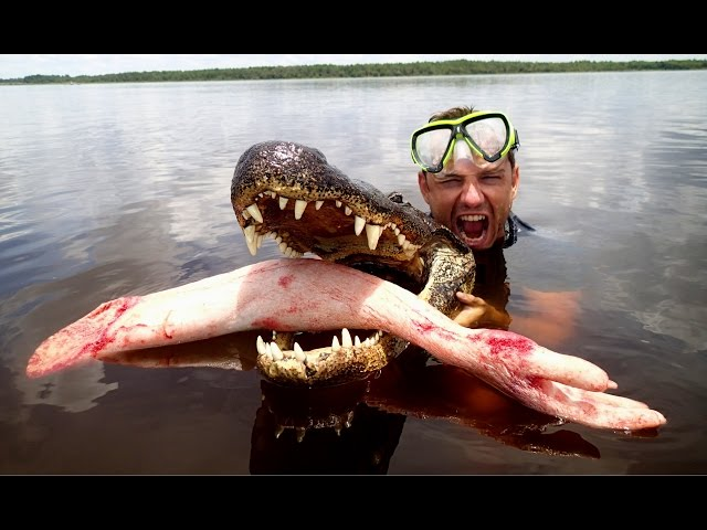 Epic Alligator Attack Prank
