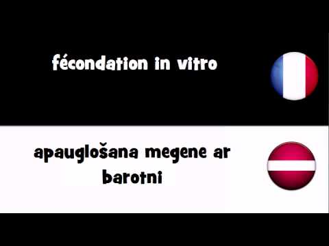 Dites le en 20 langues # fécondation in vitro