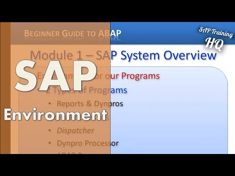 Beginners Guide to SAP ABAP - SAP Environment For Our ABAP Programs