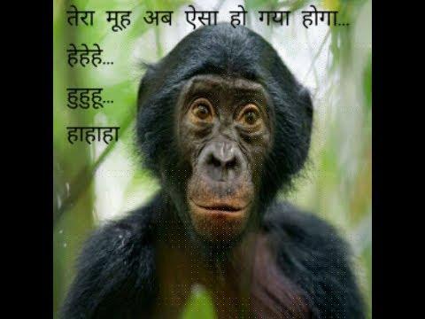 Funny Rajasthani