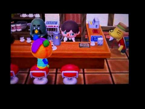 Animal Crossing New Leaf : Comment avoir le café et comment travailler pour Robusto