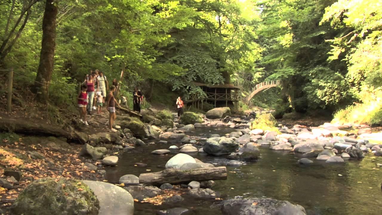 L'Auvergne en famille : nature préservée, balade aménagée