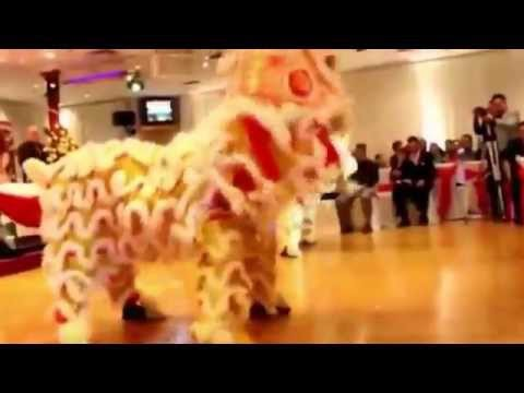 mua lan dinh cao lion dance