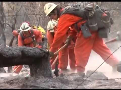 В австралии пожары уничтожили 11 тыс